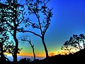 Point Lobos Reserve, Carmel USA California --- Naturreservat 'Point Lobos' südlich von Carmel, direkt am Pazifik (8283709855).jpg