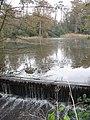 Pond adjacent to A281 (Brighton Road) at Birchen Bridge, West Sussex. - geograph.org.uk - 86303.jpg