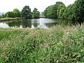 Pond near Field Head Farm - geograph.org.uk - 1375655.jpg