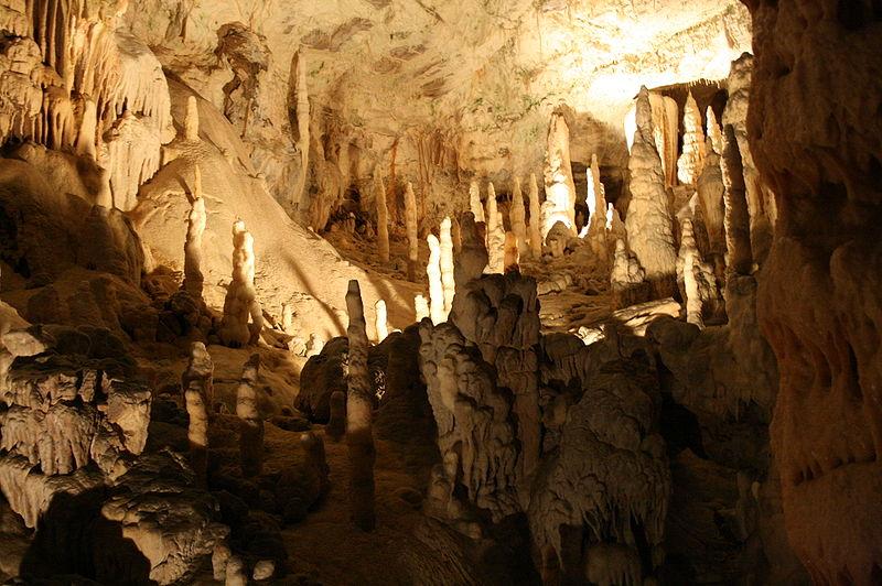 File:Postojnska jama05072008.jpg