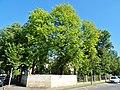 Postweg, Pirna 121950748.jpg