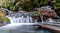 Pretty Creek, West Coast Region, New Zealand 01.jpg