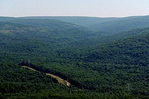 Taum Sauk Mountain - Taum Sauk Mountain is part of a large parks-and-wilderness area.
