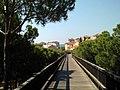 Puente de madera (Islantilla) 01.jpg