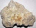 Pumice (upper Holocene; Johnston Ridge, north of Mt. St. Helens, Washington State, USA) 4.jpg