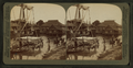 Quaint, straw-thatched houses of a Moro village, Philippine section of the World's Fair, from Robert N. Dennis collection of stereoscopic views.png