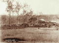 Queensland State Archives 2488 Stockyards and house at Marshs Dairy Brisbane River c 1898.png