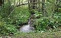 Quellen 01, Keutschacher Moor, Kärnten.jpg