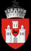 Wappen von Iași