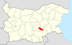 Radnevo Municipality Within Bulgaria.png
