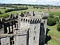 Raglan Castle - geograph.org.uk - 1419639.jpg
