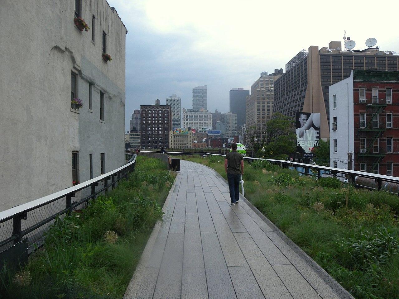 High Line Walking Tour Nyc