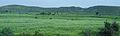 Rajastan - Views from an Indian Western Railway journey on a Monsoon Season (31).JPG
