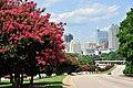 Raleigh skyline along S Saunders st.jpg