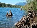 Rattlesnake Lake, King County Washington state.jpg