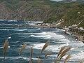Rebun-Island 礼文島元地漁港IMG 2281.JPG
