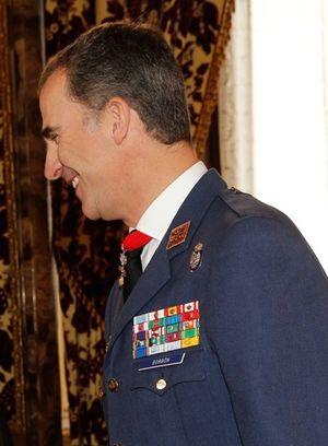Air captain general - Image: Recepción Rey Felipe VI (Cropped)