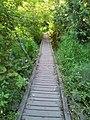 Reed Canyon, Portland (2013) - 5.jpeg