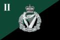 Regimental Camp Flag, 2nd Battalion, Royal Irish Regiment.png