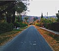 Residential road in Tarbela.JPG