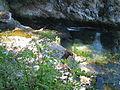 Rheinfall2003-028.JPG