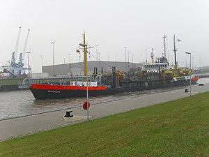 Rijndelta 2011-11-24 (1).jpg