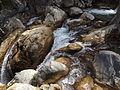 Rishikesh harikempty fallsdwar (366).JPG