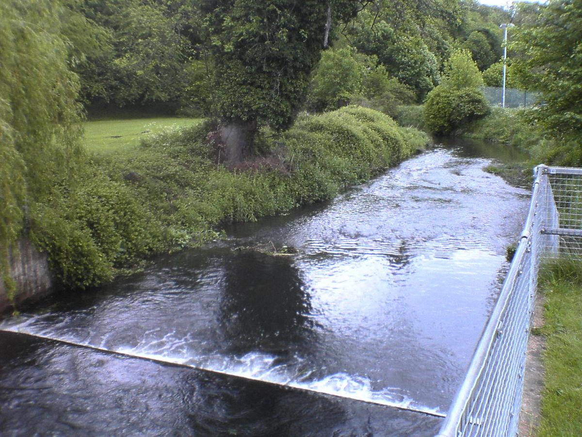 river beane
