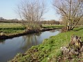 River Blackwater at Hawley Meadows - geograph.org.uk - 687548.jpg