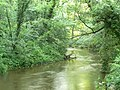 River Derwent - geograph.org.uk - 482014.jpg