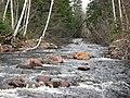 Rivière Gauthier - panoramio - Jacques Dupont.jpg