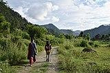 Road Valley Batheri Mandi Himachal Jul20 D72 16720.jpg