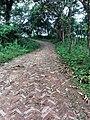 Roads towards chimbuk hill, bandarban.jpg