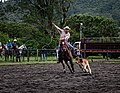 Rodeo Event Calf Roping 23.jpg