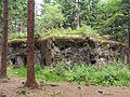 Rokytnice v Orlických horách, Horní Rokytnice, R-S 81 (rok 2010; 01).jpg