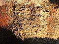 Roman brickwork Colchester.jpg