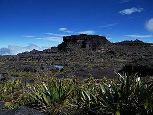 Mount Roraima - Maverick Rock, the highest point of Mount Roraima