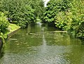 Royal Military Canal in Hythe.jpg