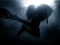 Royal Navy Diver MOD 45156092.jpg