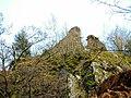 Ruines du château du Rosemont. (1).jpg