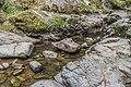 Ruisseau d'Audiernes 09.jpg