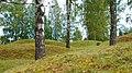 Runnevåls Gravfält (3).jpg