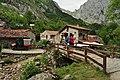 Ruta La C del Tejo-Bulnes - 015 (50279433872).jpg