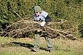 SB VSCC boxwood restoration at Mulberry Hill (15964962897).jpg