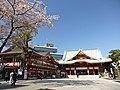 Sakura at Kanda Myojin Shrine (5618203831).jpg