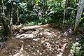Samaná Province, Dominican Republic - panoramio (112).jpg