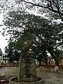 SanJuan,Batangasjf9354 05.JPG