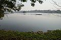 Santragachi Lake - Howrah 2013-01-25 3597.JPG