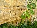 Sarlat - Benediktkapelle 2.jpg