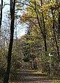 Schopenhauer Wald Neubiberg-6.jpg
